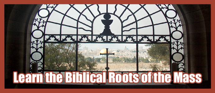 biblical-roots-banner